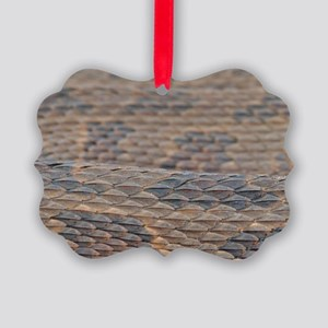 Water Snake Skin Picture Ornament