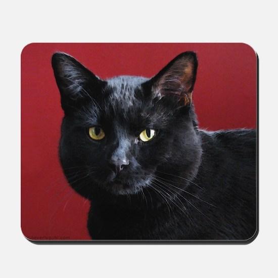 Black Cat Mousepad
