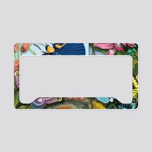 butterflies and flowers colof License Plate Holder