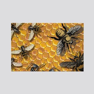bees and honeycomb illustration Rectangle Magnet