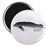 Amazon Manatee and tetras f Magnet