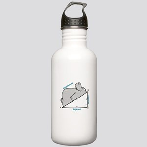 Hippotenuse Stainless Water Bottle 1.0L