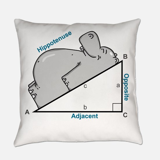 Hippotenuse Everyday Pillow