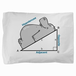 Hippotenuse Pillow Sham