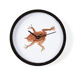 Surinam toad f Wall Clock