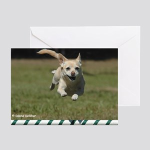 Chihuahua Greeting Cards (Pk of 10)
