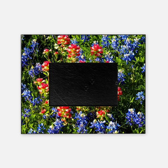 Texas bluebonnets Picture Frame