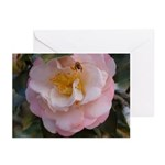 Camellia and Bee Greeting Cards (Pk of 10)