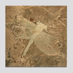 Dragonfly Insect Fossil Image Art Tile Coaster