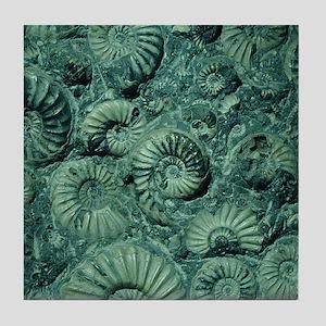 Shell Fossil Ceramic Art Tile Coaster