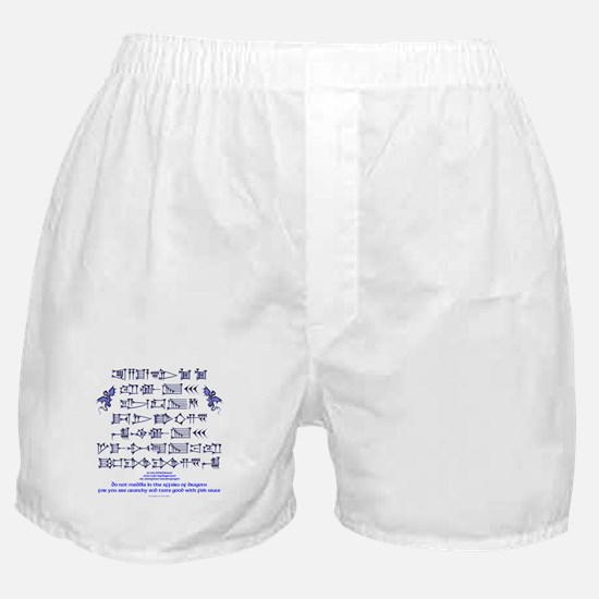 Affairs of Dragons (Sumerian) Boxer Shorts