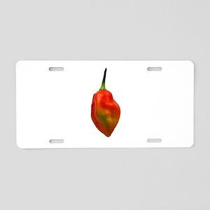 Habernero Single Pepper Photograph Aluminum Licens