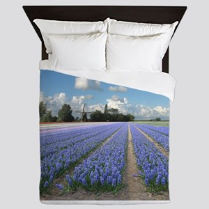 Holland Windmill Blue Purple Hyacinth Flowers Land