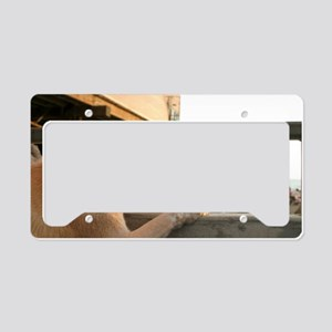 Searching The Ocean License Plate Holder
