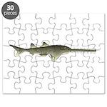Sawfish Puzzle