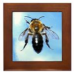 honey bee Framed Tile