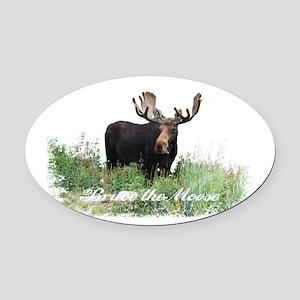 Bruce the Moose Oval Car Magnet