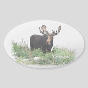 Vermont Moose Sticker (Oval)