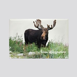 New Hampshire Moose Rectangle Magnet