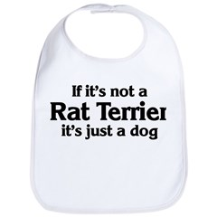 Rat Terrier: If it's not Bib