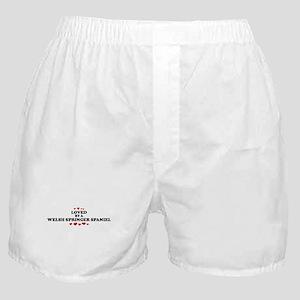 Loved: Welsh Springer Spaniel Boxer Shorts