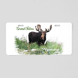 Grand Tetons WY Moose Aluminum License Plate