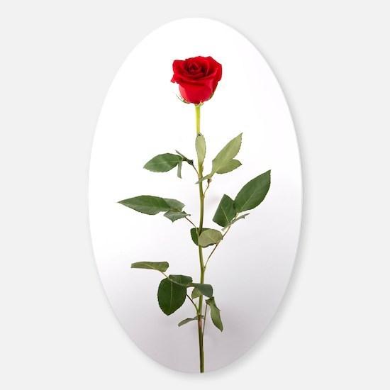 Single Red Long Stem Rose Sticker (Oval)