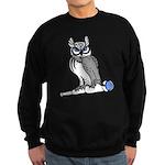 DCS Owl Sweatshirt