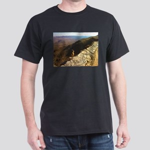 IBEX_Nubian ss T-Shirt