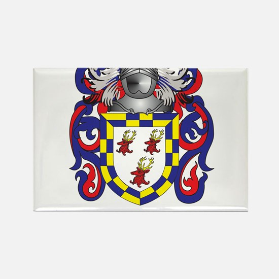 Doyle Coat of Arms Rectangle Magnet