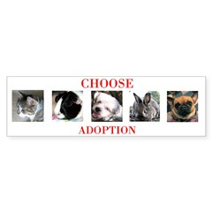 """Choose Adoption"" Bumper Bumper Sticker"
