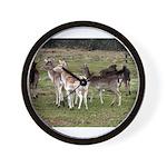 deer in the park Wall Clock