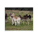 deer in the park Throw Blanket