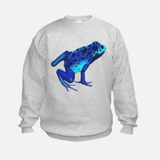 Blue Dart Frog Jumper Sweater