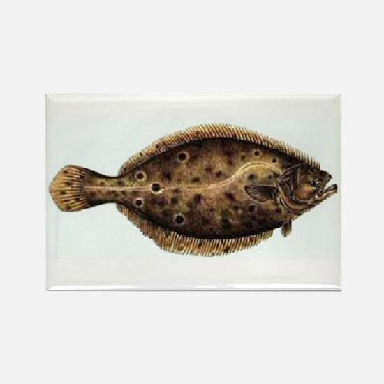 Flounder Rectangle Magnet