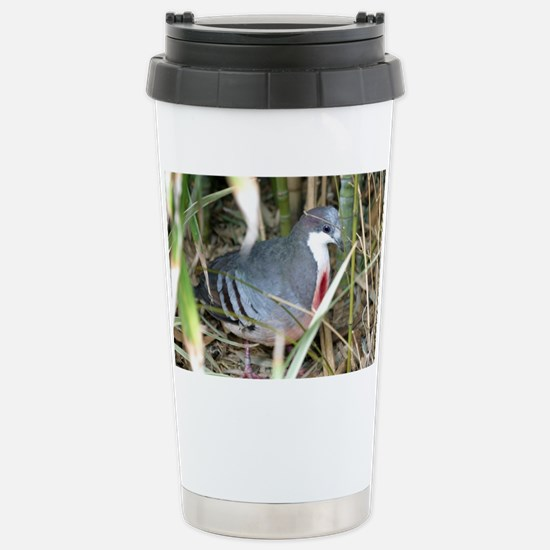 Bleeding Heart Pigeon Stainless Steel Travel Mug