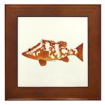Nassau Grouper f Framed Tile