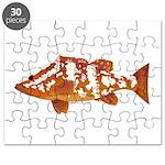 Nassau Grouper f Puzzle