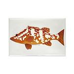 Nassau Grouper f Rectangle Magnet (100 pack)