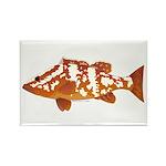 Nassau Grouper f Rectangle Magnet (10 pack)