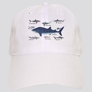 Shark Types Baseball Cap