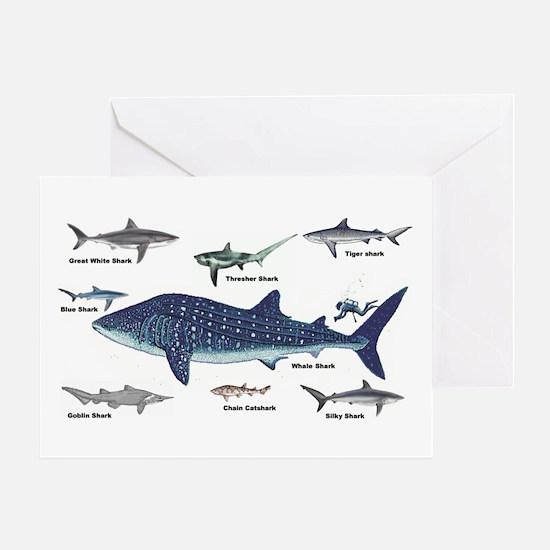Shark Types Greeting Card