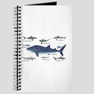 Shark Types Journal