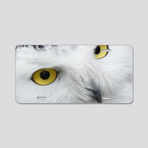 white snowy owl face closeu Aluminum License Plate
