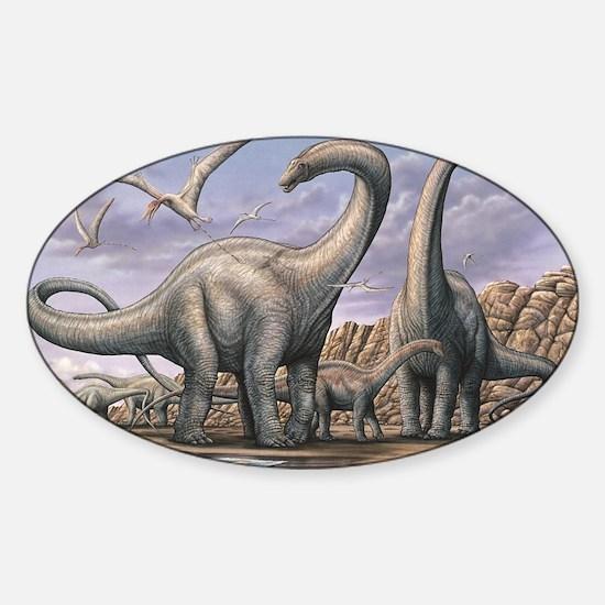 Apatosaurus Dinosaurs Sticker (Oval)