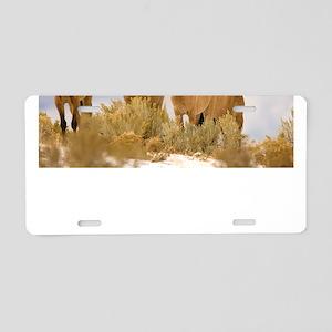 Buckskin Horses Aluminum License Plate
