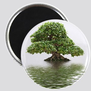ficus water reflection Magnet