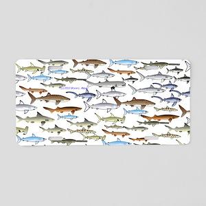 School Of Sharks 2 Aluminum License Plate