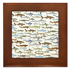 School of Sharks 2 Framed Tile