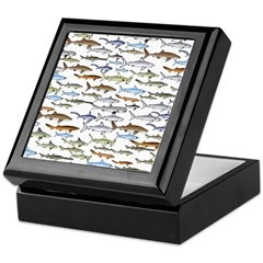 School of Sharks 2 Keepsake Box